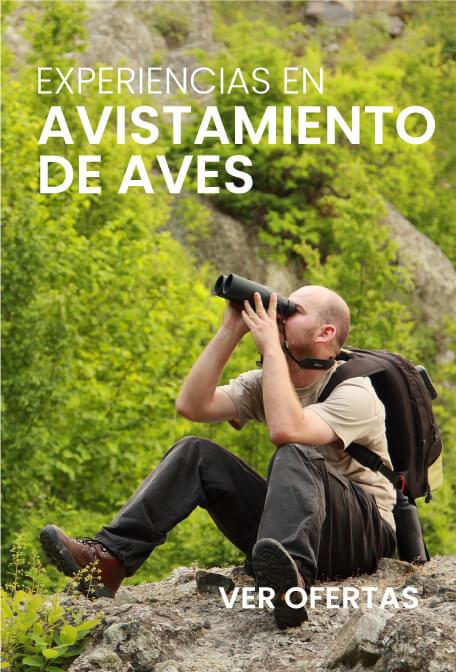 Promociones ecodestinos.grupoaviatur.com
